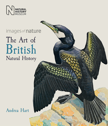 The Art of British Natural History