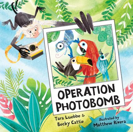 Operation Photobomb