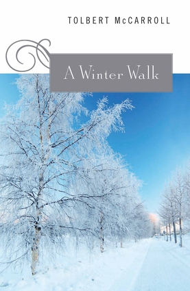 A Winter Walk