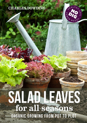 Salad leaves for all seasons