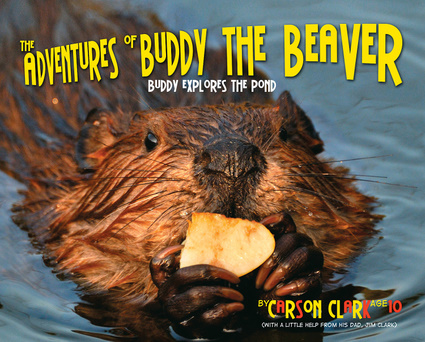 The Adventures of Buddy the Beaver: Buddy Explores the Pond