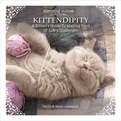 Kittendipity