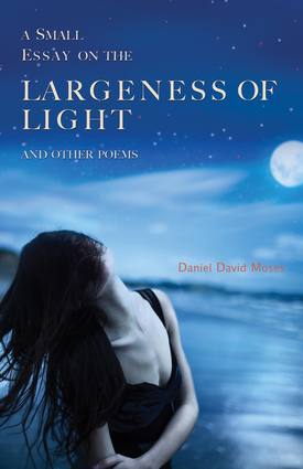 A Small Essay on the Largeness of Light and Other Poems