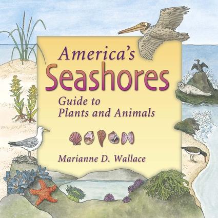 America's Seashores