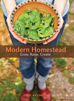 Modern Homestead