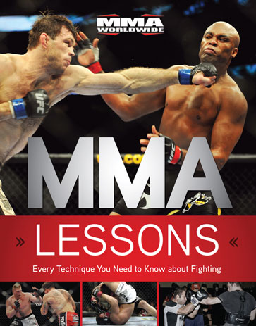 Mixed Martial Arts Lessons