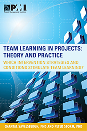 Team Learning in Projects