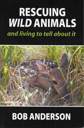 Rescuing Wild Animals and Living to Tell About It