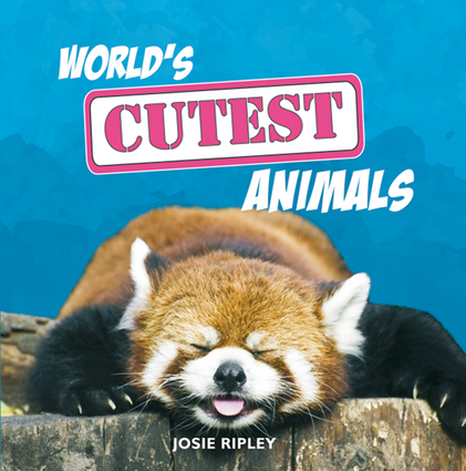 World's Cutest Animals