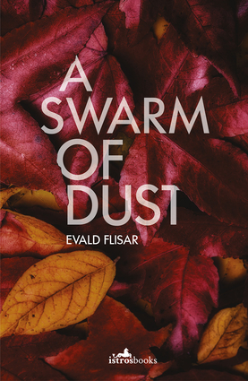 A Swarm of Dust
