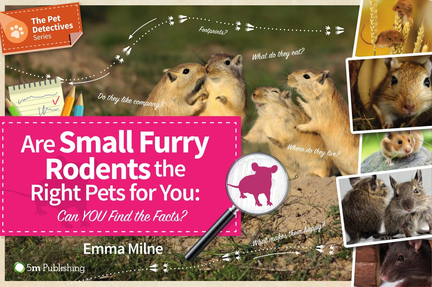 Are Small Furry Rodents the Right Pet for You