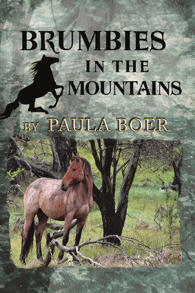 Brumbies in the Mountains