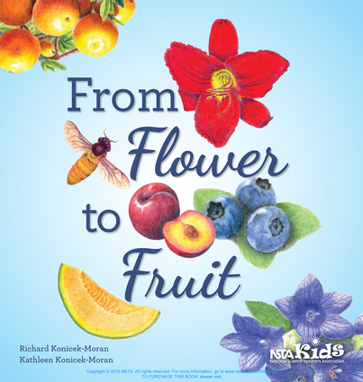From Flower to Fruit