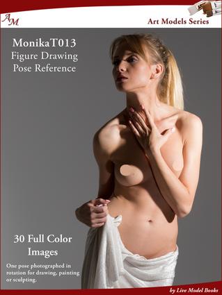 Art Models MonikaT013