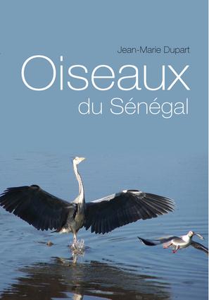 Oiseaux du Senegal