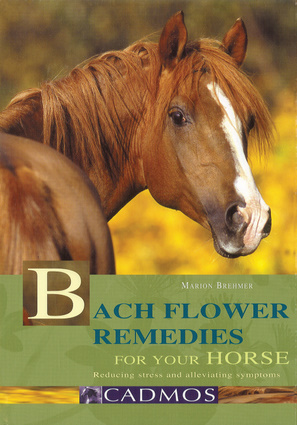 Bach Flower Remedies for Your Horse