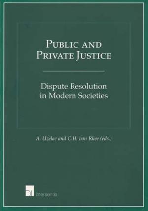 Public and Private Justice
