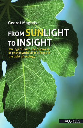 From Sunlight to Insight