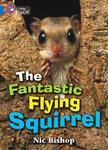 The Fantastic Flying Squirrel Workbook