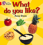 What Do You Like? Workbook