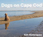 Dogs On Cape Cod