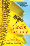 God's Ecstasy