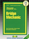 Bridge Mechanic