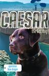 Caesar the War Dog: Operation Blue Dragon
