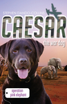 Caesar the War Dog: Operation Pink Elephant