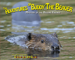 The Adventures of Buddy the Beaver: Mystery of the Missing Friends