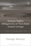 Human Rights Obligations of Non-State Armed Groups