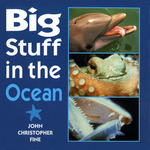 Big Stuff in the Ocean