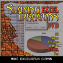 Slaying Excel Dragons DVD