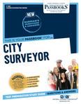 City Surveyor