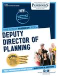 Deputy Director of Planning