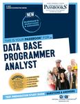 Data Base Programmer Analyst