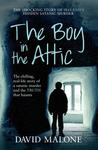 Boy in the Attic