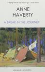 A Break in the Journey
