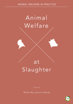 Animal Welfare at Slaughter