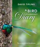 A Bird Photographer's Diary