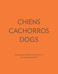 Chiens Cachorros Dogs