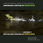 A Photographic Guide of the Common Amphibians & Reptiles of Costa Rica/ Guía fotográfica de los anfibios y reptiles más comunes de Costa Rica