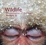 Wildlife Photographer of the Year: Portfolio 22