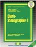 Clerk-Stenographer I