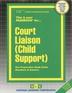 Court Liaison (Child Support)
