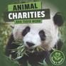 Animal Charities and Their Work