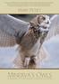 Minerva's Owls