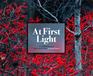 At First Light: